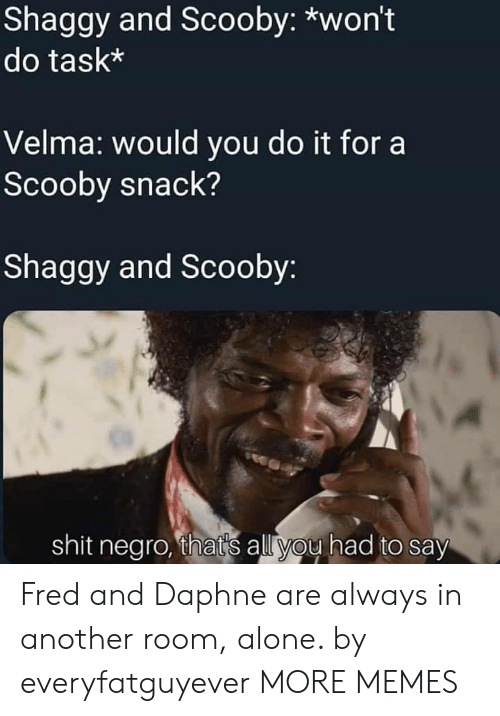 Being Alone, Dank, and Memes: Shaggy and Scooby: *won't  do task*  Velma: would you do it for a  Scooby snack?  Shaggy and Scooby  shit negro, thats all you had to say Fred and Daphne are always in another room, alone. by everyfatguyever MORE MEMES