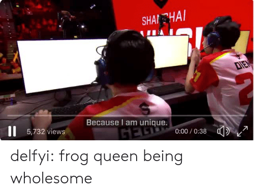 Tumblr, Queen, and Blog: SHAİ-HAI  Because I am unique.  5,732 views  0:00/0:38 delfyi:  frog queen being wholesome