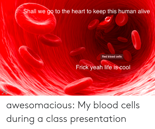 Shall We: Shall we go to the heart to keep this human alive  Red blood cells  Frick yeah life is cool awesomacious:  My blood cells during a class presentation