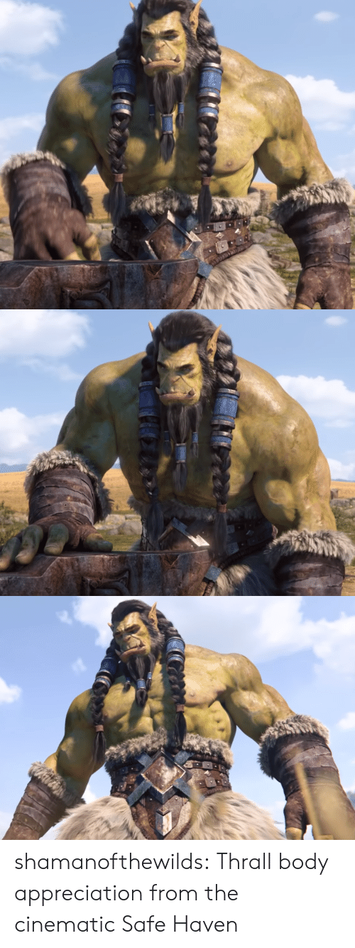 appreciation: shamanofthewilds:  Thrall body appreciation from the cinematic Safe Haven