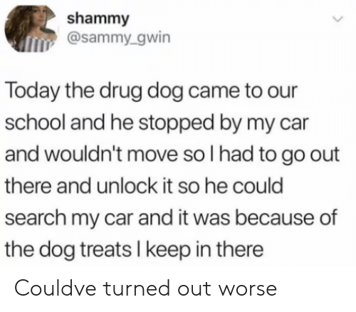 School, Search, and Today: shammy  osammy.gwin  Today the drug dog came to our  school and he stopped by my car  and wouldn't move so l had to go out  there and unlock it so he could  search my car and it was because of  the dog treats I keep in there Couldve turned out worse