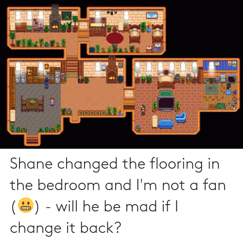Shane: Shane changed the flooring in the bedroom and I'm not a fan (😬) - will he be mad if I change it back?
