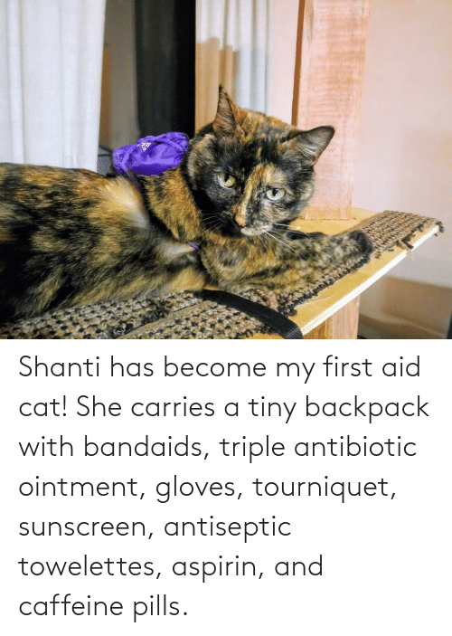 sunscreen: Shanti has become my first aid cat! She carries a tiny backpack with bandaids, triple antibiotic ointment, gloves, tourniquet, sunscreen, antiseptic towelettes, aspirin, and caffeine pills.