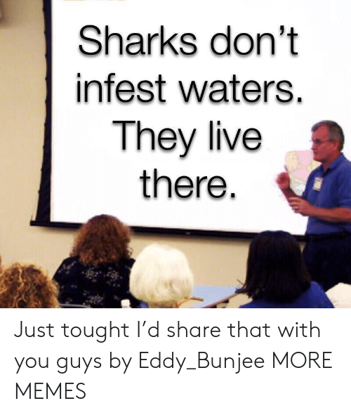 Eddy: Sharks don't  infest waters.  They live  there Just tought I'd share that with you guys by Eddy_Bunjee MORE MEMES