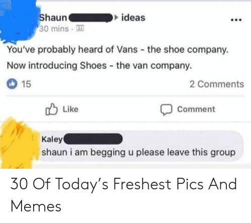 Memes, Shoes, and Vans: Shaun  30 mins T  ideas  You've probably heard of Vans the shoe company.  Now introducing Shoes the van company.  15  2 Comments  Like  Comment  Kaley  shaun i am begging u please leave this group 30 Of Today's Freshest Pics And Memes