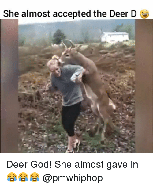 Deer, God, and Memes: She almost accepted the Deer D Deer God! She almost gave in 😂😂😂 @pmwhiphop