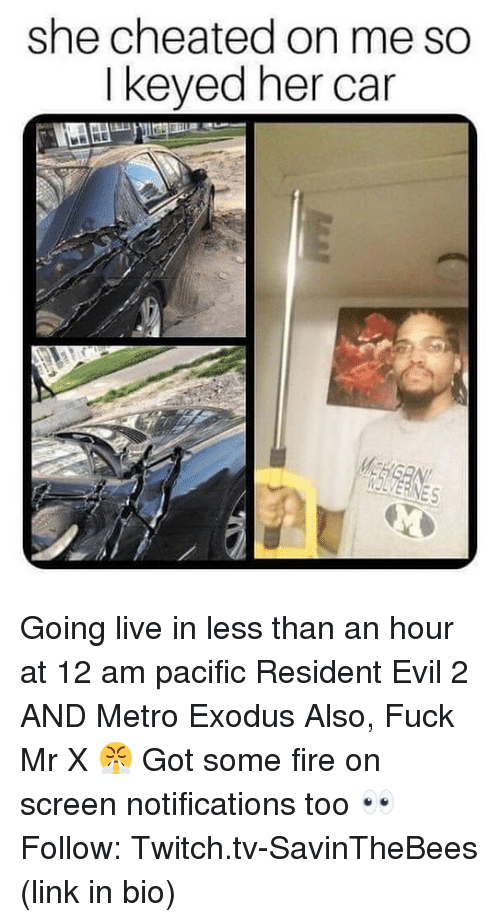 Fire, Funny, and Twitch: she cheated on me so  I keyed her car  IOLVERINES Going live in less than an hour at 12 am pacific Resident Evil 2 AND Metro Exodus Also, Fuck Mr X 😤 Got some fire on screen notifications too 👀 Follow: Twitch.tv-SavinTheBees (link in bio)