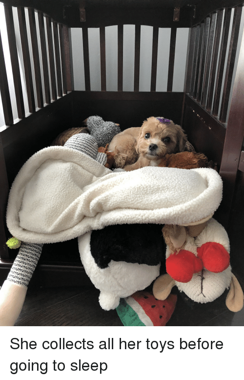 Toys, Sleep, and Her: She collects all her toys before going to sleep