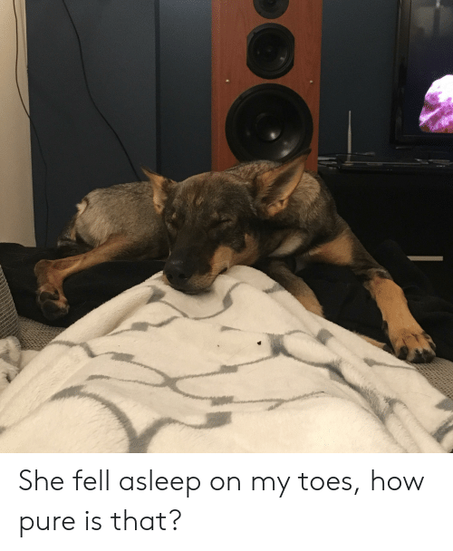 How, She, and Pure: She fell asleep on my toes, how pure is that?