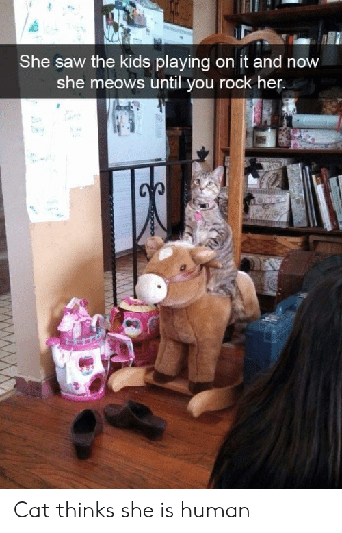 Meows: She saw the kids playing on it and now  she meows until you rock her Cat thinks she is human