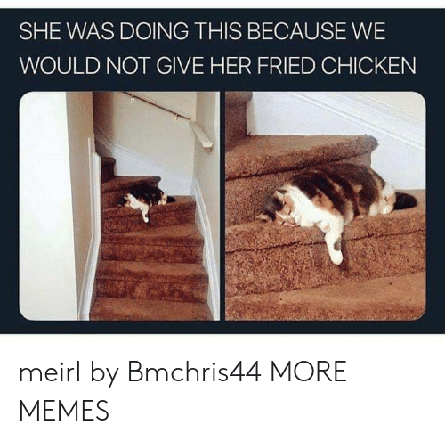 Dank, Memes, and Target: SHE WAS DOING THIS BECAUSE WE  WOULD NOT GIVE HER FRIED CHICKEN meirl by Bmchris44 MORE MEMES