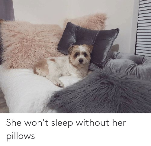 pillows: She won't sleep without her pillows