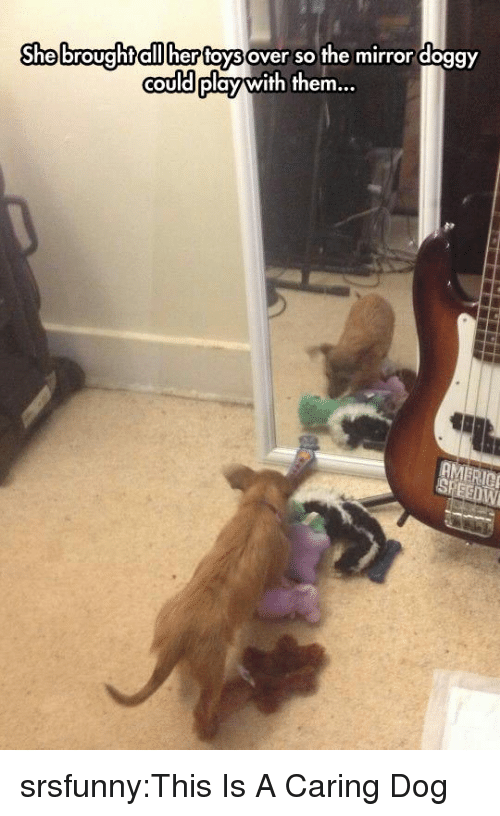 Tumblr, Blog, and Http: Shebroughtaiilher foysover so the mirror doggY  couldplay with them.  COU srsfunny:This Is A Caring Dog