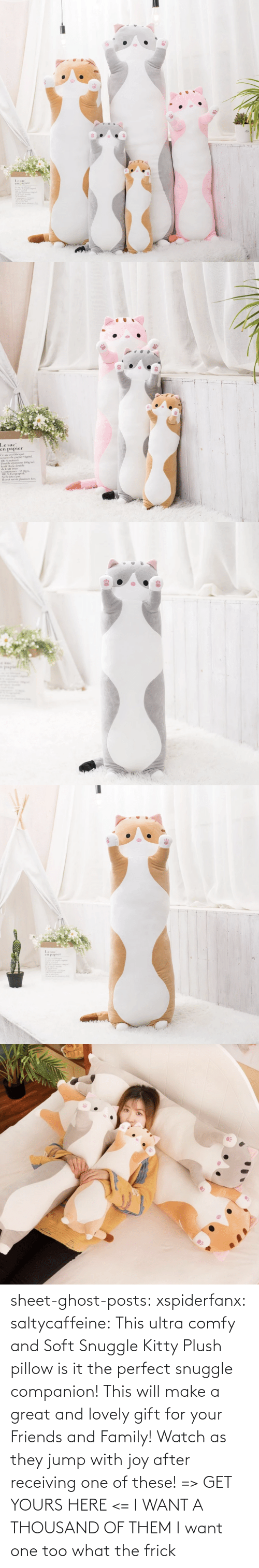 Ghost: sheet-ghost-posts: xspiderfanx:  saltycaffeine:  This ultra comfy and Soft Snuggle Kitty Plush pillow is it the perfect snuggle companion! This will make a great and lovely gift for your Friends and Family! Watch as they jump with joy after receiving one of these! => GET YOURS HERE <=    I WANT A THOUSAND OF THEM  I want one too what the frick