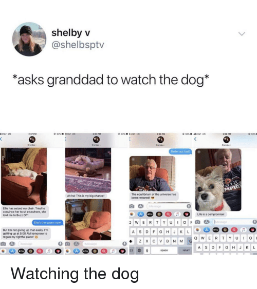 Queen, Grandpa, and At&t: shelbyV  @shelbsptv  asks granddad to watch the dog*  AT&T LTE  2:37 PM  2:37 PM  92%  l AT&T  UE  2:38 PM  2:38 PM  92%  Grandps  Grandpa  Grandpa  randpa  Better act fast  The equilibrium of the universe has  been restored  Ah ha! This is my big chance!  0  Ellie has seized my chair. Tried to  convince her to sit elsewhere, she  told me to Buzz Off!  Pay  She's the queen noW!  wERTYUIOFl@]  D)  1..tessage  0  But I'm not giving up that easily. I'm  getting up at 5:00 AM tomorrow to  regain my rightful place!  Pay  A S DF GHJ K L  A S DF GHJ K L  Pay  Pay  return Watching the dog