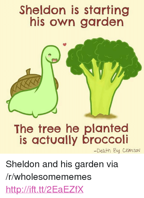 "sheldon: Sheldon is starting  his own garden  The tree he planted  is actually broccoli  -Deatn By CRimSoN <p>Sheldon and his garden via /r/wholesomememes <a href=""http://ift.tt/2EaEZfX"">http://ift.tt/2EaEZfX</a></p>"
