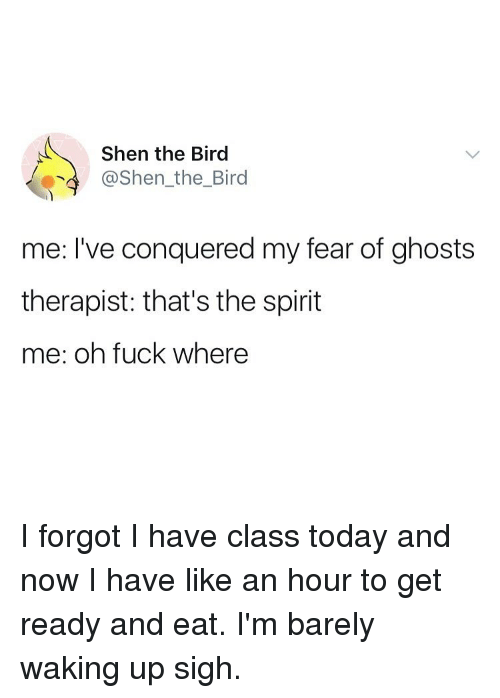 Fuck, Spirit, and Today: Shen the Bird  @Shen_the_Bird  me: I've conquered my fear of ghosts  therapist: that's the spirit  me: oh fuck where I forgot I have class today and now I have like an hour to get ready and eat. I'm barely waking up sigh.
