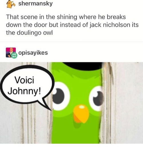 Ironic, Jack Nicholson, and The Shining: shermansky  That scene in the shining where he breaks  down the door but instead of jack nicholson its  the doulingo owl  opisayikes  Voici  Johnny!