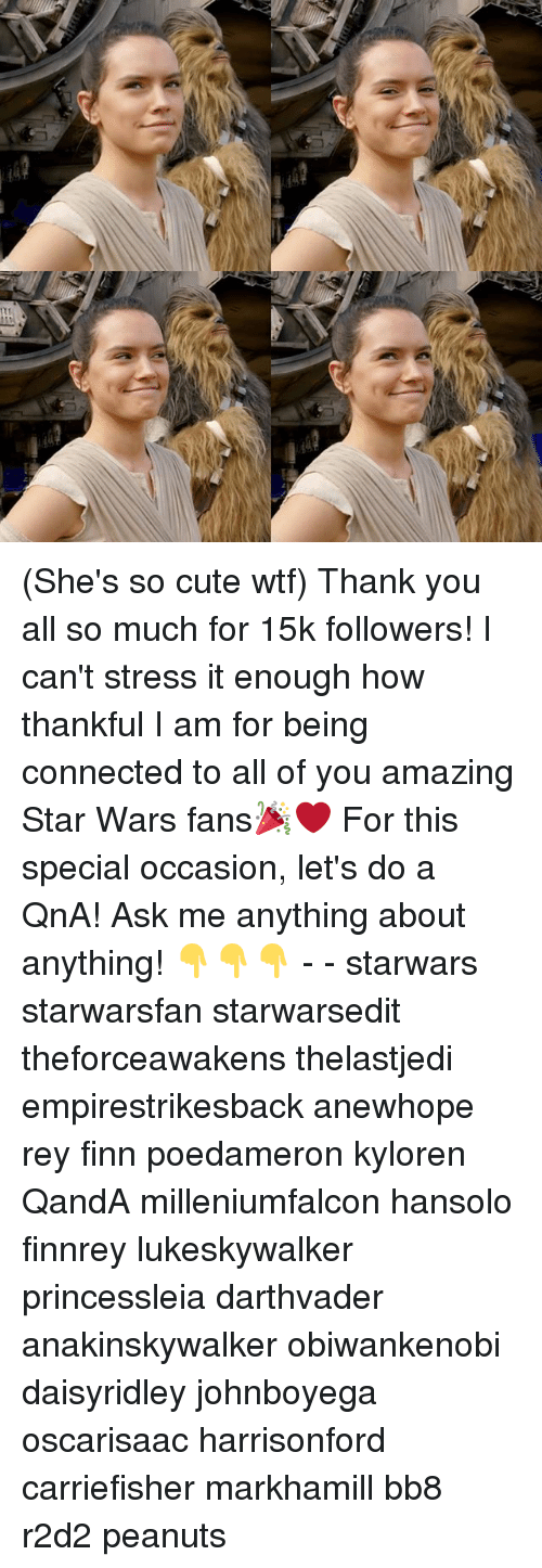 Bb-8, Cute, and Finn: (She's so cute wtf) Thank you all so much for 15k followers! I can't stress it enough how thankful I am for being connected to all of you amazing Star Wars fans🎉❤ For this special occasion, let's do a QnA! Ask me anything about anything! 👇👇👇 - - starwars starwarsfan starwarsedit theforceawakens thelastjedi empirestrikesback anewhope rey finn poedameron kyloren QandA milleniumfalcon hansolo finnrey lukeskywalker princessleia darthvader anakinskywalker obiwankenobi daisyridley johnboyega oscarisaac harrisonford carriefisher markhamill bb8 r2d2 peanuts