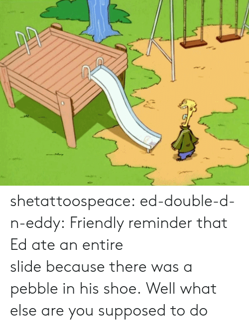 double d: shetattoospeace:  ed-double-d-n-eddy:  Friendly reminder that Ed ate an entire slide because there was a pebble in his shoe.  Well what else are you supposed to do