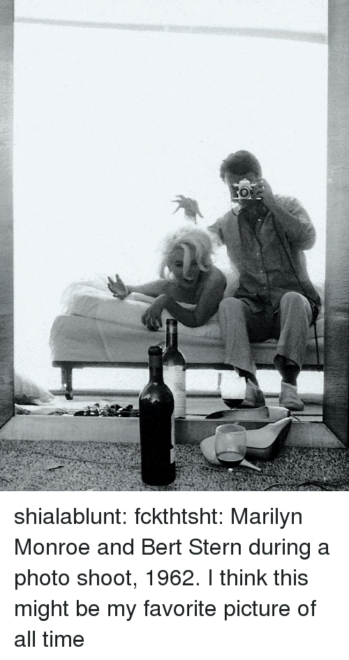 Tumblr, Blog, and Http: shialablunt:  fckthtsht:  Marilyn Monroe and Bert Stern during a photo shoot, 1962.  I think this might be my favorite picture of all time