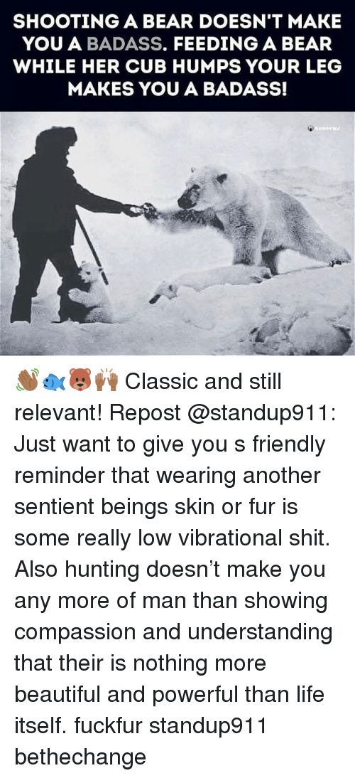 Beautiful, Life, and Memes: SHOOTING A BEAR DOESN'T MAKE  YOU A BADASS. FEEDING A BEAR  WHILE HER CUB HUMPS YOUR LEG  MAKES YOU A BADASS!  anone 👋🏾🐟🐻🙌🏾 Classic and still relevant! Repost @standup911: Just want to give you s friendly reminder that wearing another sentient beings skin or fur is some really low vibrational shit. Also hunting doesn't make you any more of man than showing compassion and understanding that their is nothing more beautiful and powerful than life itself. fuckfur standup911 bethechange