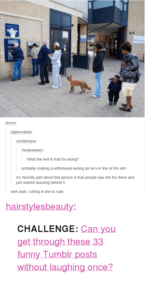 """Funny, Rude, and Saw: shorm  pigfacedlady  vardaesque  rheabekkahc:  What the hell is that fox doing?  probably making a withdrawal seeing as he's in line at the atm  my favorite part about this picture is that people saw the fox there and  just started queuing behind it  well yeah, cutting in line is rude <p><a href=""""http://hairstylesbeauty.com/post/113834829272/challenge-can-you-get-through-these-33-funny"""" class=""""tumblr_blog"""">hairstylesbeauty</a>:</p><blockquote><p><a href=""""http://www.iknowhair.com/33-amazingly-funny-tumblr-posts/""""><b></b></a>  <b>CHALLENGE: </b><a href=""""http://goo.gl/uUz9Cx"""">Can you get through these 33 funny Tumblr posts without laughing once?</a><br/></p></blockquote>"""
