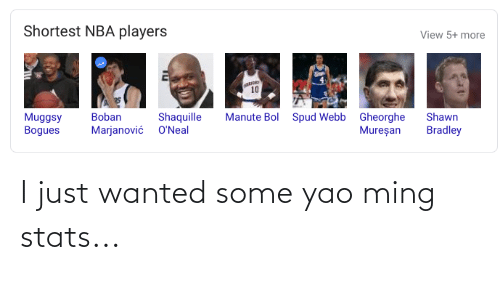 Webb: Shortest NBA players  View 5+ more  10  Manute Bol Spud Webb Gheorghe  Mureşan  Muggsy  Bogues  Shaquille  Marjanović O'Neal  Boban  Shawn  Bradley I just wanted some yao ming stats...