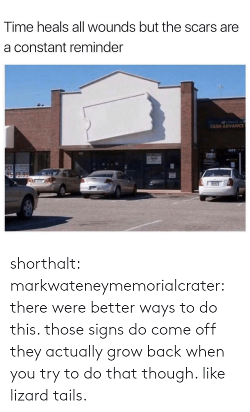 tails: shorthalt:  markwateneymemorialcrater:  there were better ways to do this. those signs do come off   they actually grow back when you try to do that though. like lizard tails.
