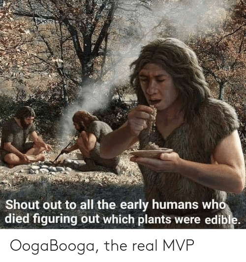 shout: Shout out to all the early humans who  died figuring out which plants were edible. OogaBooga, the real MVP