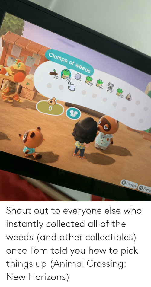 Instantly: Shout out to everyone else who instantly collected all of the weeds (and other collectibles) once Tom told you how to pick things up (Animal Crossing: New Horizons)