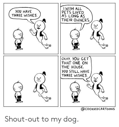 shout: Shout-out to my dog.