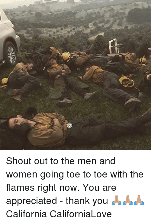 Memes, Thank You, and California: Shout out to the men and women going toe to toe with the flames right now. You are appreciated - thank you 🙏🏽🙏🏽🙏🏽 California CaliforniaLove