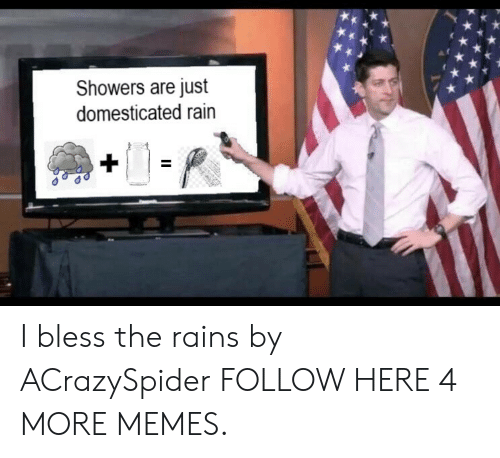 domesticated: Showers are just  domesticated rain I bless the rains by ACrazySpider FOLLOW HERE 4 MORE MEMES.