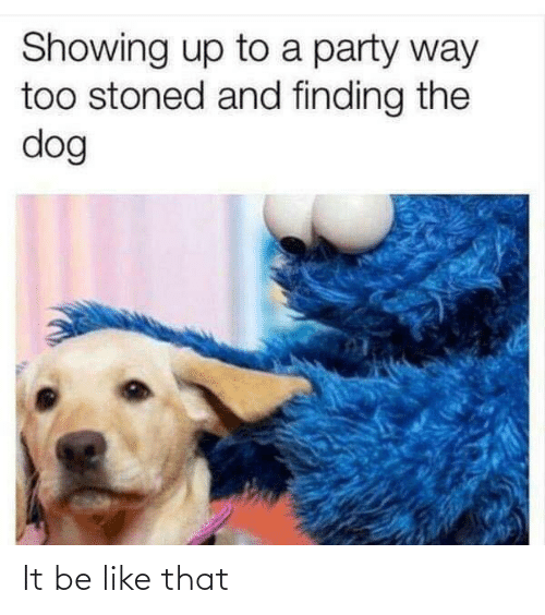 Showing: Showing up to a party way  too stoned and finding the  dog It be like that