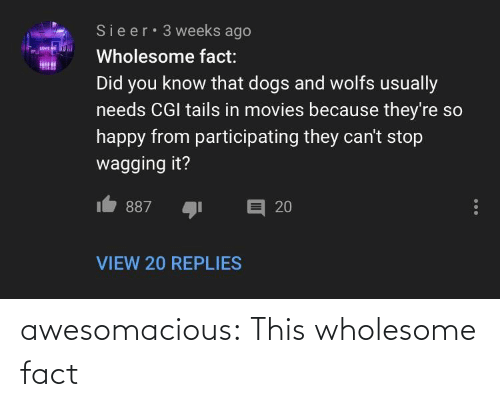 Know That: Sieer 3 weeks ago  LOVE  Wholesome fact:  Did you know that dogs and wolfs usually  needs CGI tails in movies because they're so  happy from participating they can't stop  wagging it?  目 20  887  VIEW 20 REPLIES awesomacious:  This wholesome fact
