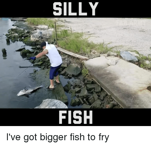 Silly Fish: SILLY  FISH I've got bigger fish to fry