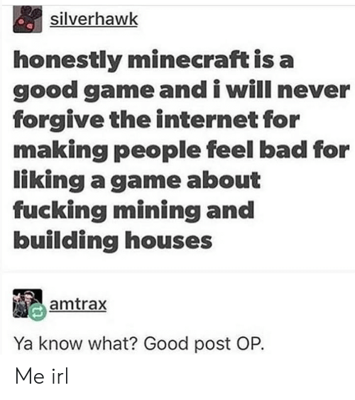 good game: silverhawk  honestly minecraft is a  good game and i will never  forgive the internet for  making people feel bad for  liking a game about  fucking mining and  building houses  amtrax  Ya know what? Good post OP. Me irl