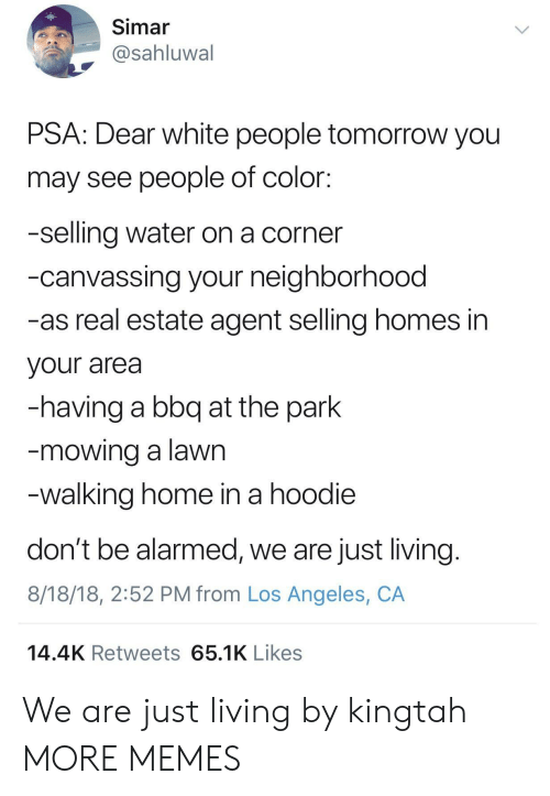 Dank, Memes, and Target: Simar  @sahluwal  PSA: Dear white people tomorrow you  may see people of color:  -selling water on a corner  -canvassing your neighborhood  -as real estate agent selling homes in  your area  -having a bbq at the park  mowing a lawn  walking home in a hoodie  don't be alarmed, we are just living  8/18/18, 2:52 PM from Los Angeles, CA  14.4K Retweets 65.1K Likes We are just living by kingtah MORE MEMES