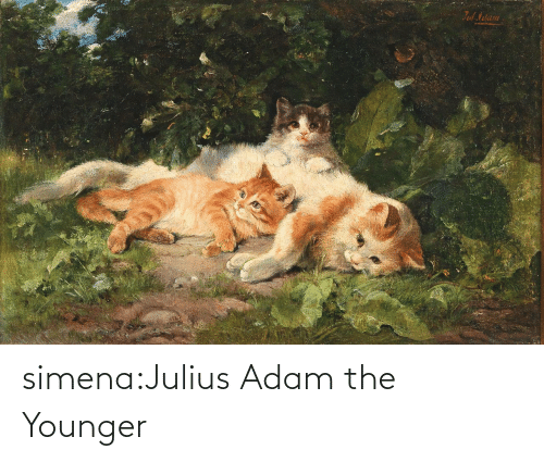 adam: simena:Julius Adam the Younger