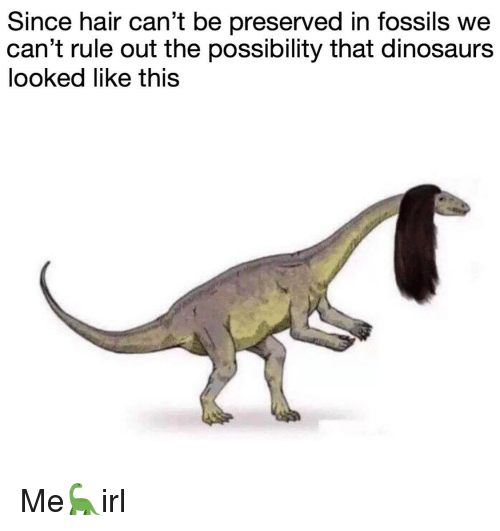 Dinosaurs, Hair, and This: Since hair can't be preserved in fossils we  can't rule out the possibility that dinosaurs  looked like this Me🦕irl