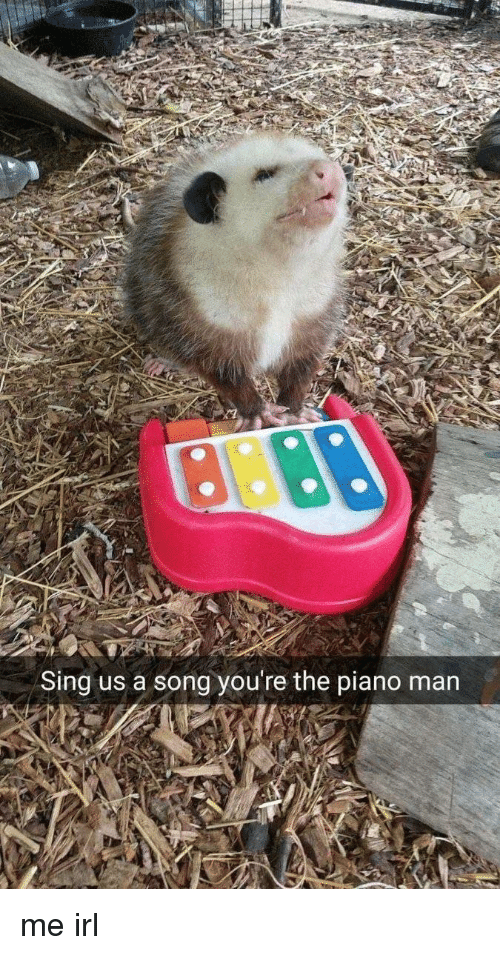 piano man: Sing us a song you're the piano man me irl