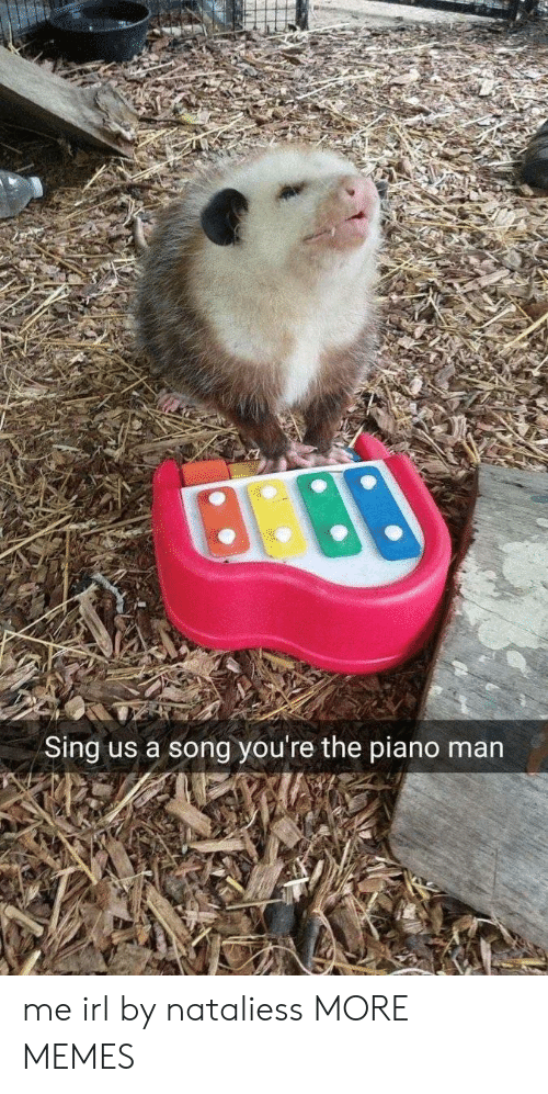 piano man: Sing us a song you're the piano man me irl by nataliess MORE MEMES