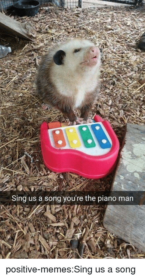 Memes, Tumblr, and Blog: Sing us a song you're the piano man positive-memes:Sing us a song