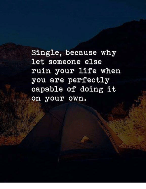Life, Single, and Why: Single, because why  let someone else  ruin your life when  you are perfectly  capable of doing it  on your own.