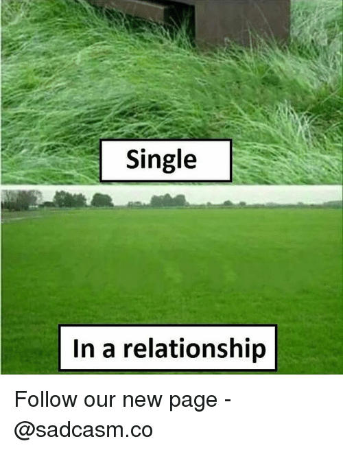 Memes, In a Relationship, and Single: Single  In a relationship Follow our new page - @sadcasm.co
