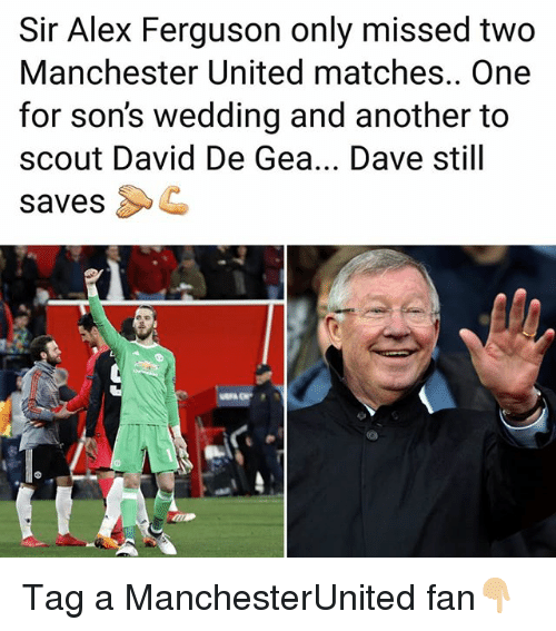 Ferguson: Sir Alex Ferguson only missed two  Manchester United matches.. One  for son's wedding and another to  scout David De Gea... Dave still  savesC Tag a ManchesterUnited fan👇🏼