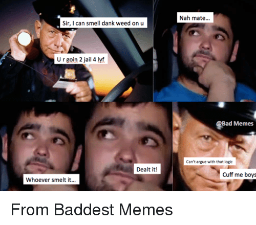 Bad Memes: Sir, I can smell dank weed on u  U r goin 2 jail 4 lyf  Dealt it!  Whoever smelt it...  Nah mate...  Bad Memes  Can't argue with that logic  Cuff me boys From Baddest Memes