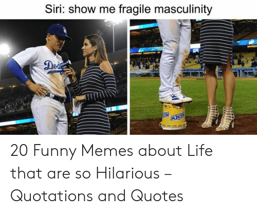 Funny Memes About Life: Siri: show me fragile masculinity 20 Funny Memes about Life that are so Hilarious – Quotations and Quotes