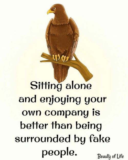 Being Alone, Fake, and Life: Sitting alone  and enjoying your  own company is  better than being  surrounded by fake  реople.  Beauty of Life